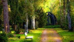 Green.bench